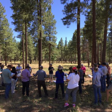 Field tour in Northern Arizona. Photo by Tahnee Robertson, courtesy of the Desert Landscape Conservation Cooperative.